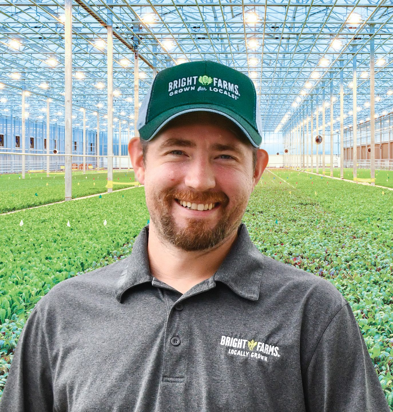 Nick Chaney Head Grower BrightFarms OHI Greenhouse