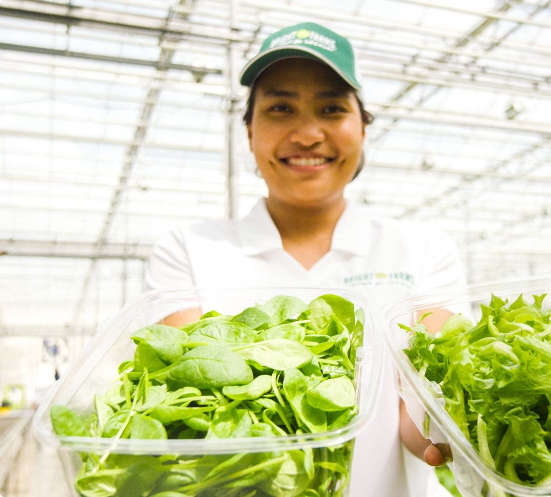 Fai Jakkreerat Chatkaew | Production Manager | Woman Holding Lettuce | BrightFarms CHI Greenhouse | Rochelle Illinois | Baby Salad Greens | Spinach | Sunny Crunch