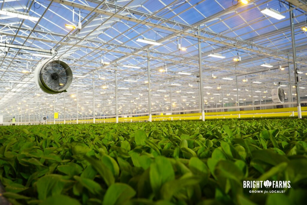 https://www.brightfarms.com/wp-content/uploads/2021/09/BrightFarms_Greenhouse_1_updated-scaled.jpg